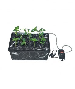 topraksiz-tarim-hidroponik-bitki-yetiştirme